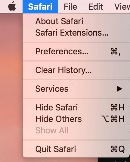 open safari preferences