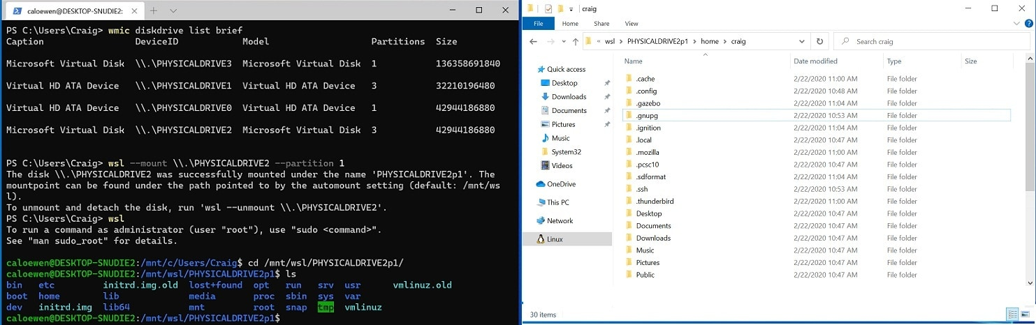 mount a disk in wsl2