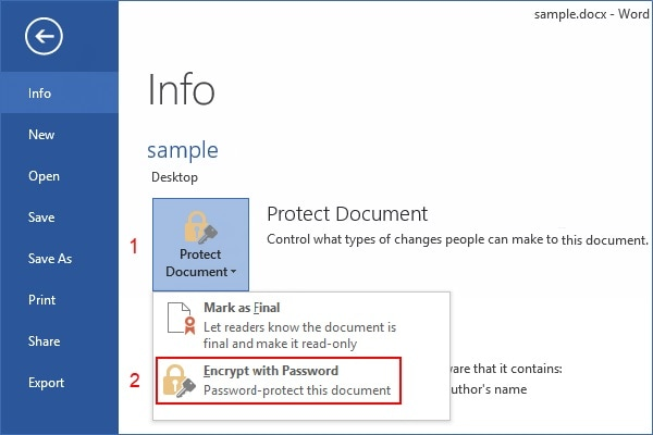 MS Word Info Protect Document