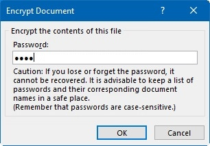 MS Word Password Protection