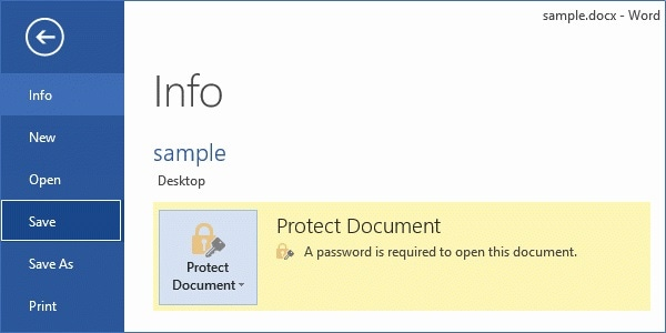 MS Word Document Protected