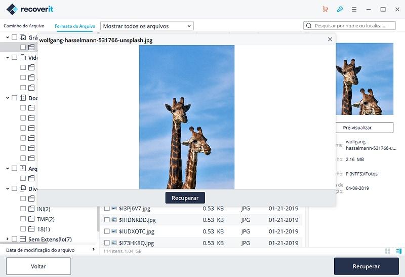 como recuperar arquivos deletados hd formatado