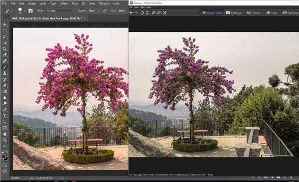 color change after export