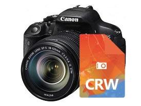 recupera archivos CRW eliminados de tu cámara