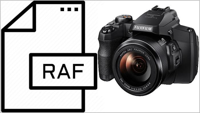 raf files of the fujifilm camera