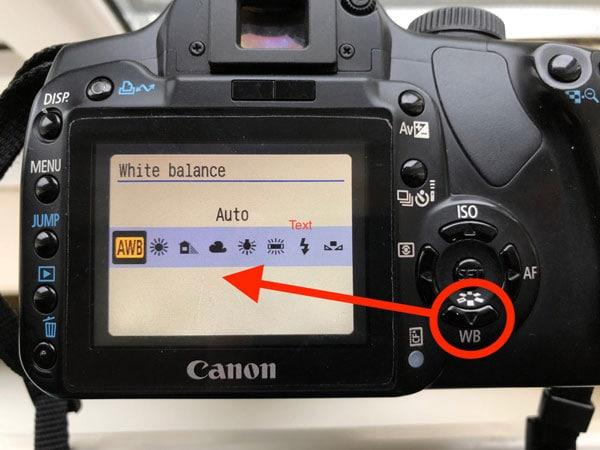 adjust white balance setting