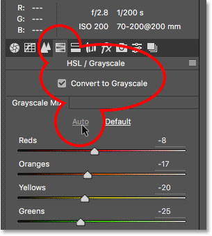switch to grayscale to fix camera taking black pictures