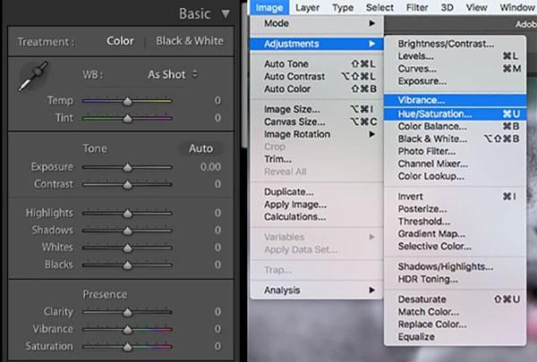 Photoshop Adjustments Vibrance