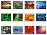 Organize Your Photos with the Best Free Photo Organizing Software