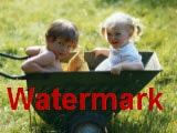 Top 5 Free Photo Watermark Software