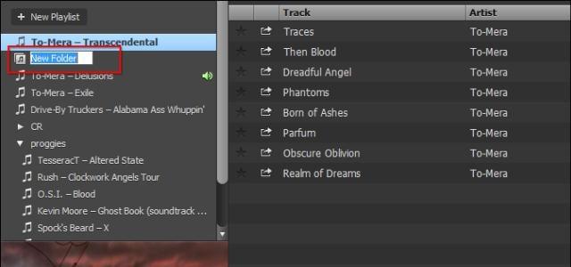 È facile creare una Playlist su Spotify e organizzarla con questo riferimento