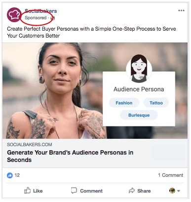 Facebook Sponsored Ads - Lead Magnet
