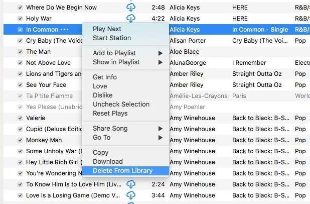 delete duplicate songs