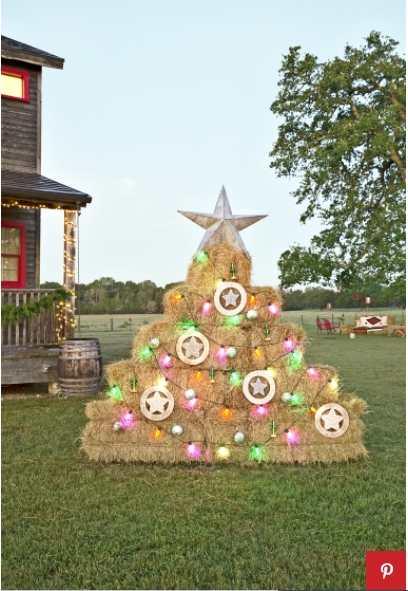 Hay Bale tree
