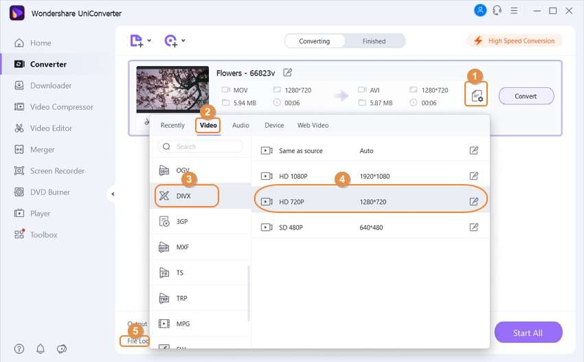 Choose DivX as the output format