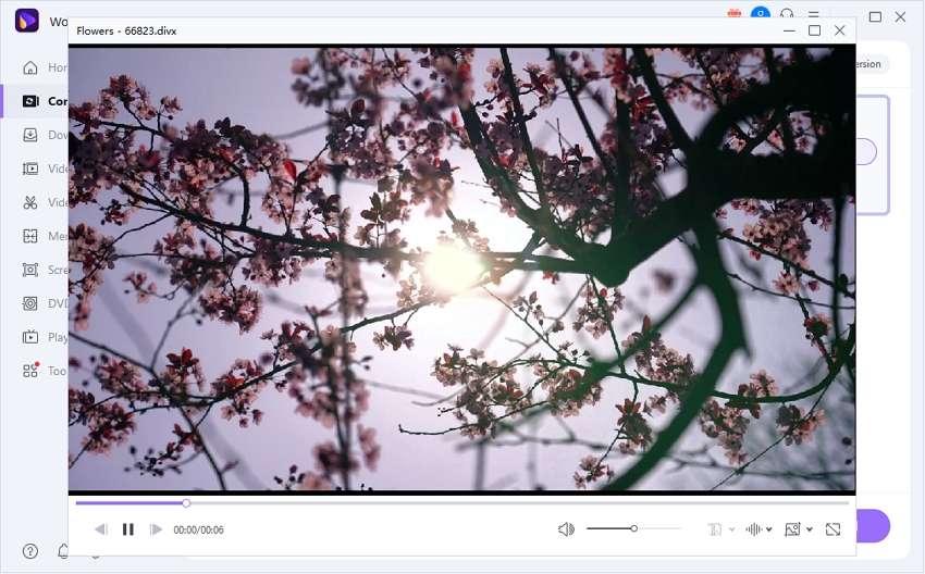 Play DivX VOD files