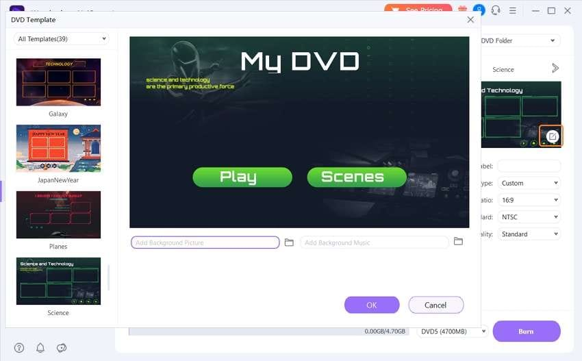 Customize DVD template and set DVD parameters