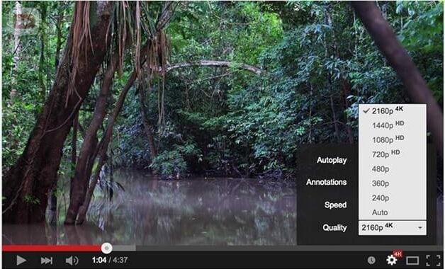 4k movie sites - YouTube