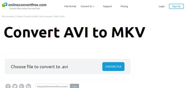 convert AVI to MKV by OnlineConvertFree