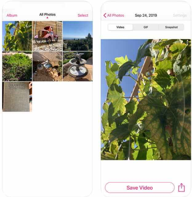Convert Video to Live Photo Online Free-LP - Live Image to Video & GIF