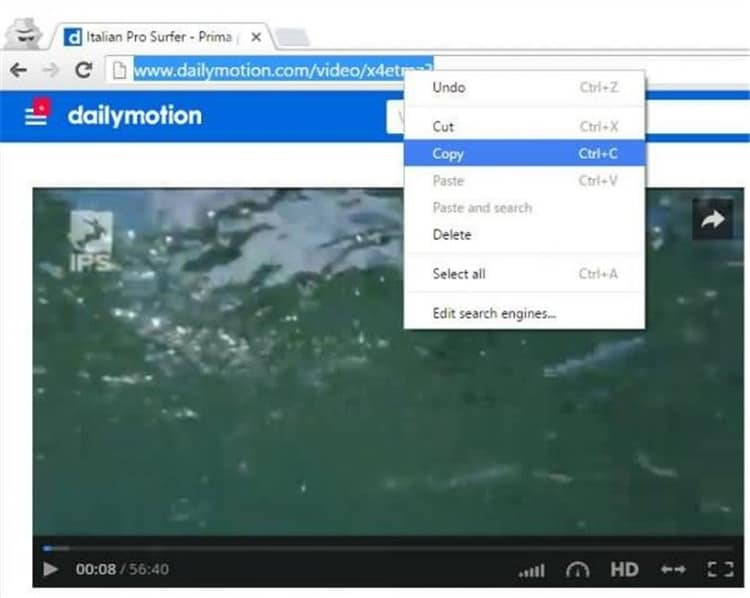 copy dailymotion video url
