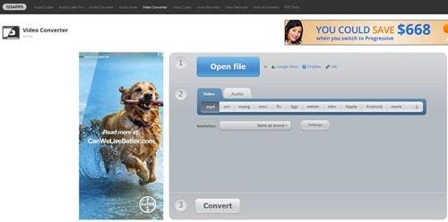 dailymotion online converter