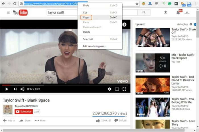 copy the dailymotion video