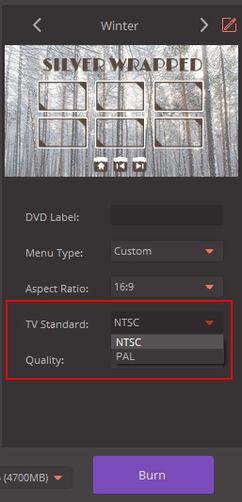 TV Standard