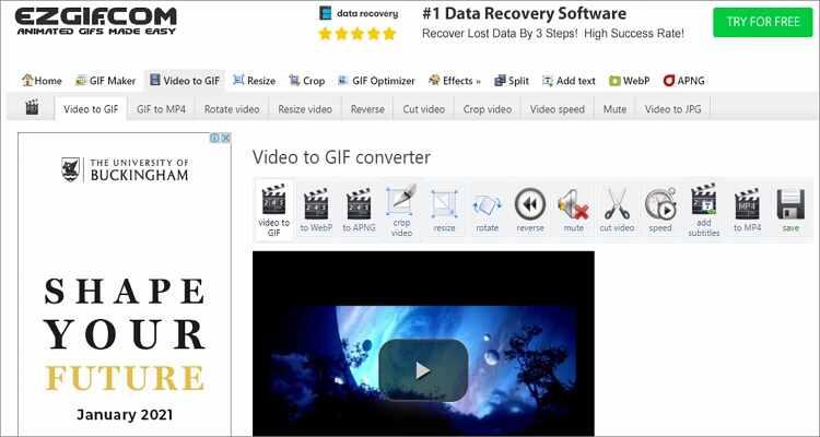 WebM in GIF online kostenlos konvertieren - Ezgif