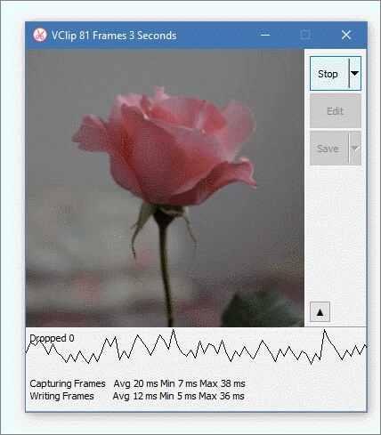Kostenloser online Bildschirm zu GIF Converter - VideoHelp