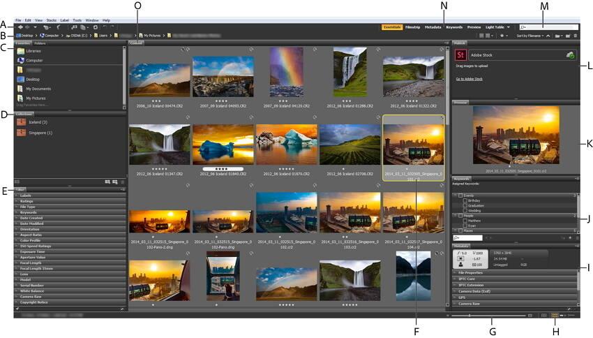 Adobe Bridge - add metadata to M4V