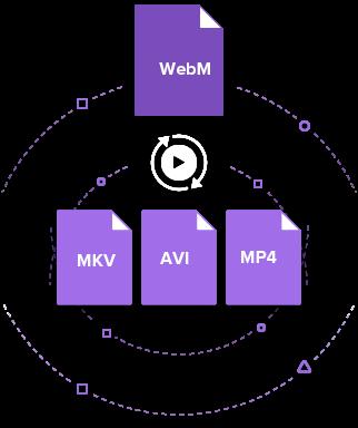 WebM to MKV