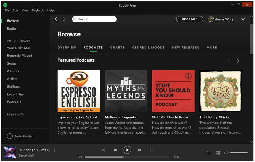 Spotify Musik abspielen