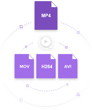 MP4 to H264 converter