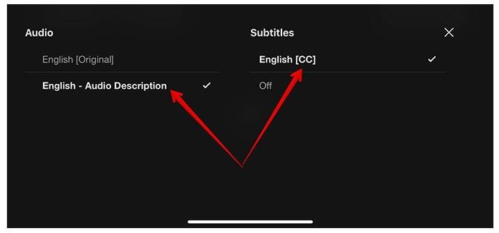 turn on off subtitle netflix