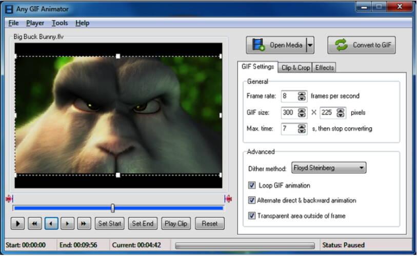 free video to GIF converter - Any GIF Animator