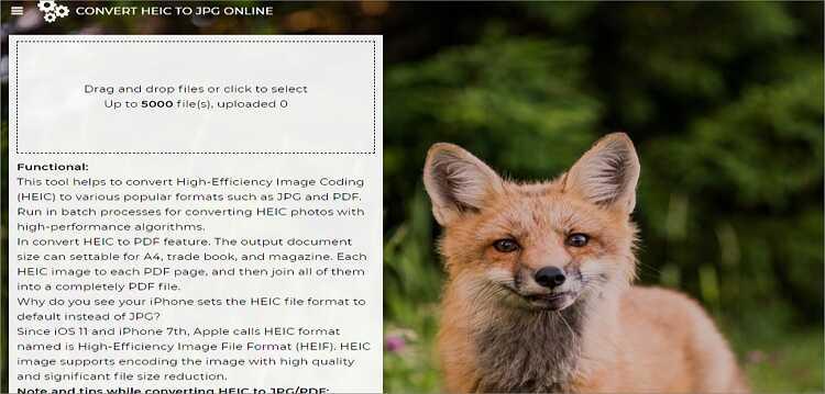HEIC online kostenlos zu JPG konvertieren - Freetoolonline