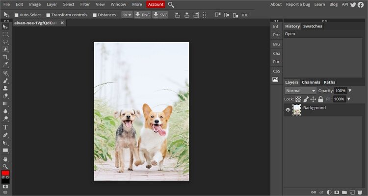 Crop a Picture on Mac for Free - Photopea
