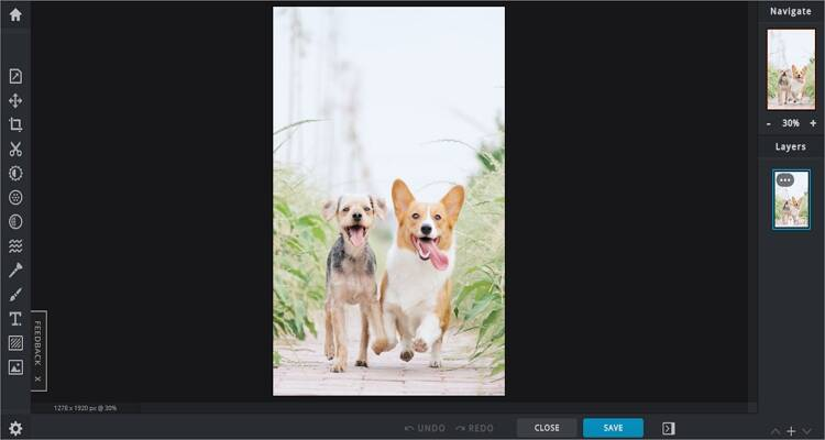 Image Editor online tool for Mac - Pixlr