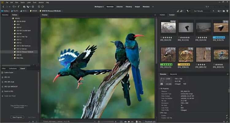 reduce the image size online - Adobe Bridge