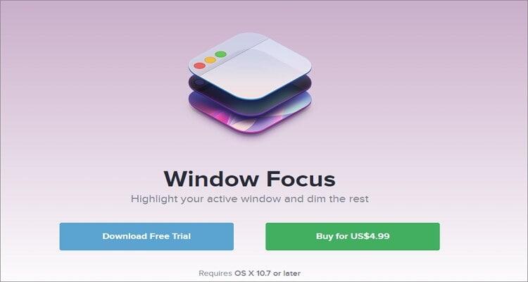 Window Focus