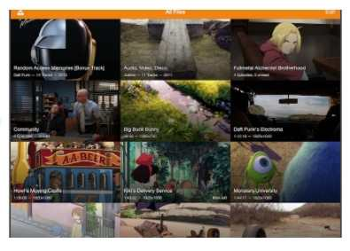 iPad Video Player - VLC for iOS
