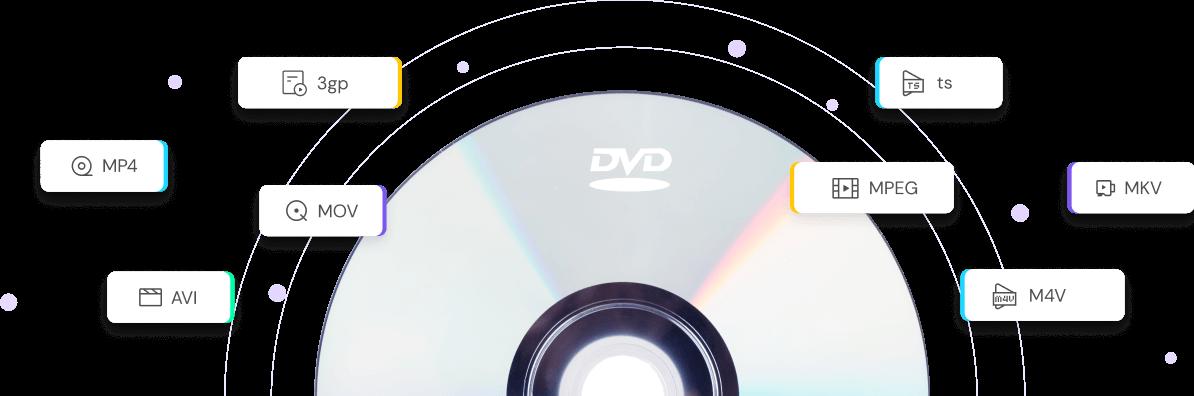 Unterstützt alle DVD-Formate
