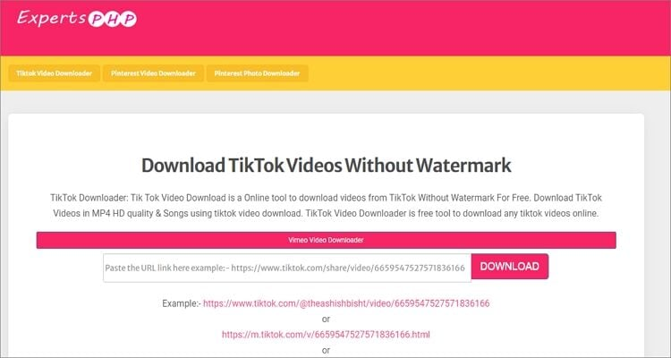 Get TikTok Video Online Without Watermark -  ExpertsPHP