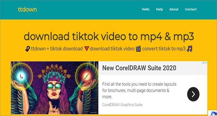 Save TikTok Videos in Photo Gallery Online Free - Ttdown