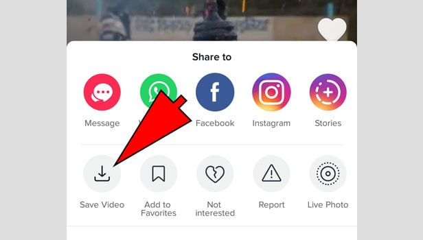 share TikTok Video on WhatsApp on Android and iPhone