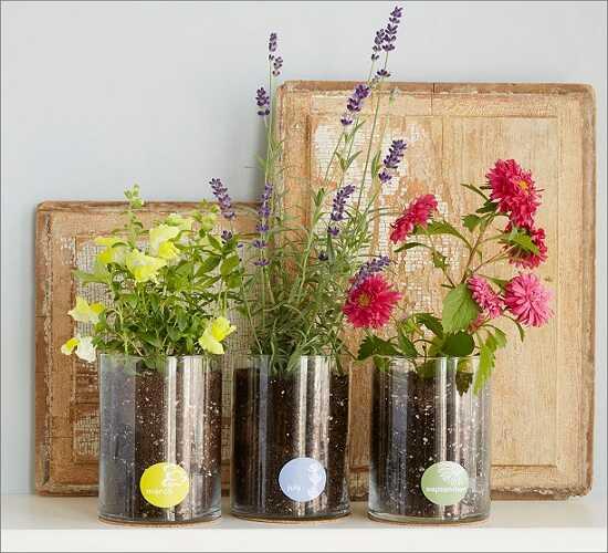 Flower Glow Kit