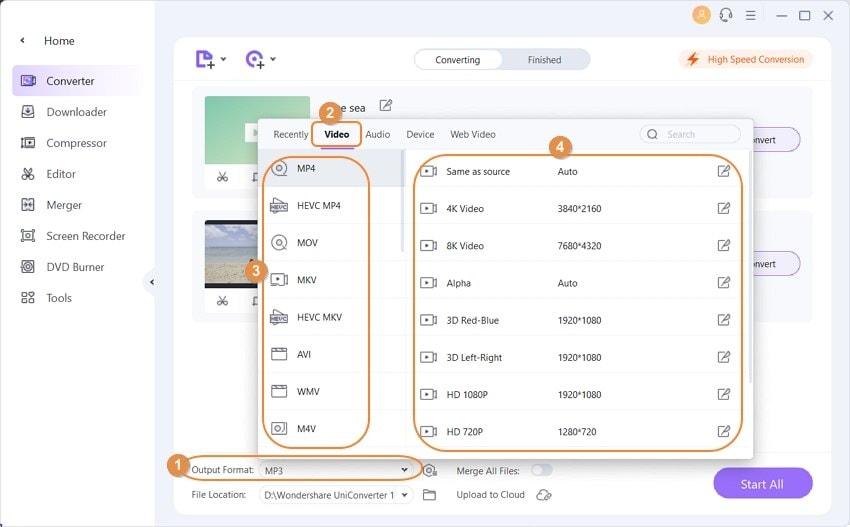 Open Video format Settings window