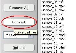 convert WebM to JPG